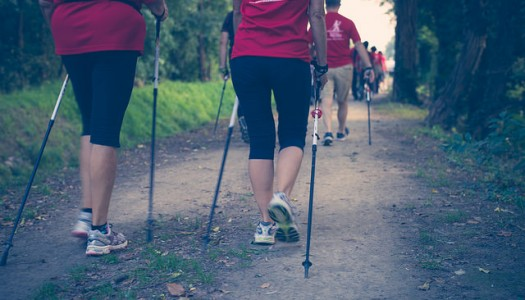 Everything you need to know about Nordic Walking