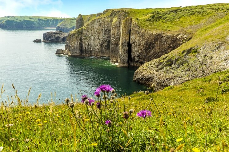 Lydstep cliffs, Pembrokeshire