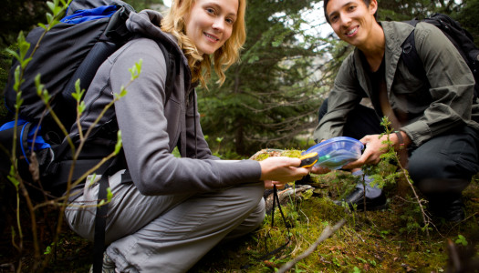 Geocaching For Beginners – The How, What, Where & Why