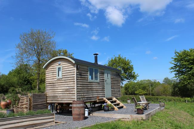 Dimpsey Glamping Shepherd's hut