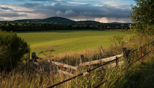 Expert Advice On Looking After The Countryside