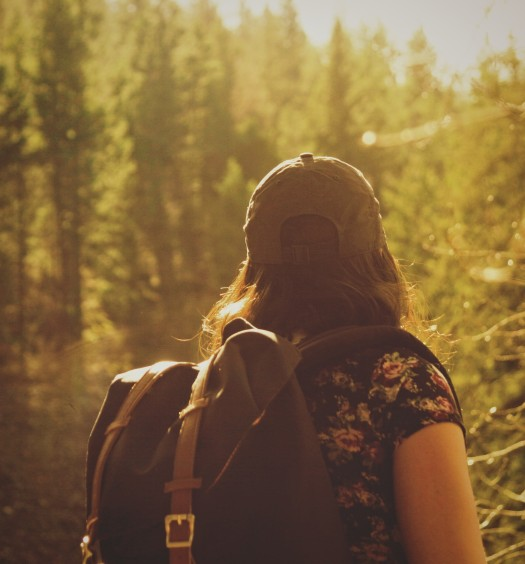 Female hiker in a forest on a sunny day