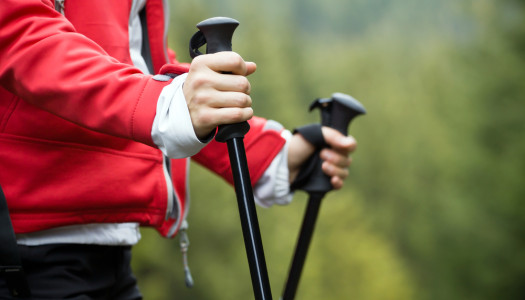 Walking & Trekking Poles Buying Guide