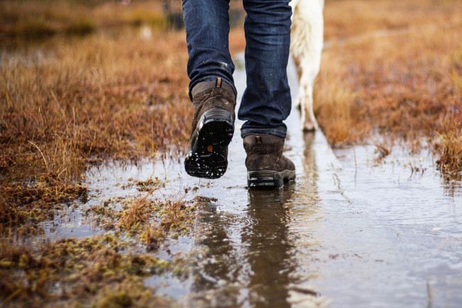 Person wearing walking boots in a wet field walking their dog