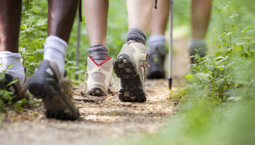 Walking Boots or Walking Shoes – Which should you buy?