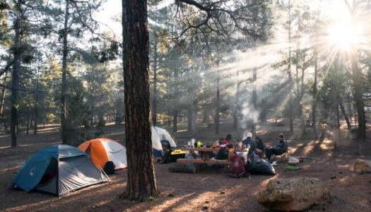 20 Things Only Real Campers Will Understand