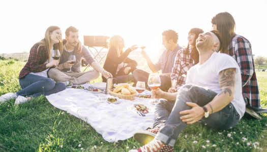 Top Tips & Recipes to Have the Perfect Picnic