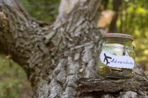 Jar of money sitting on a tree branch
