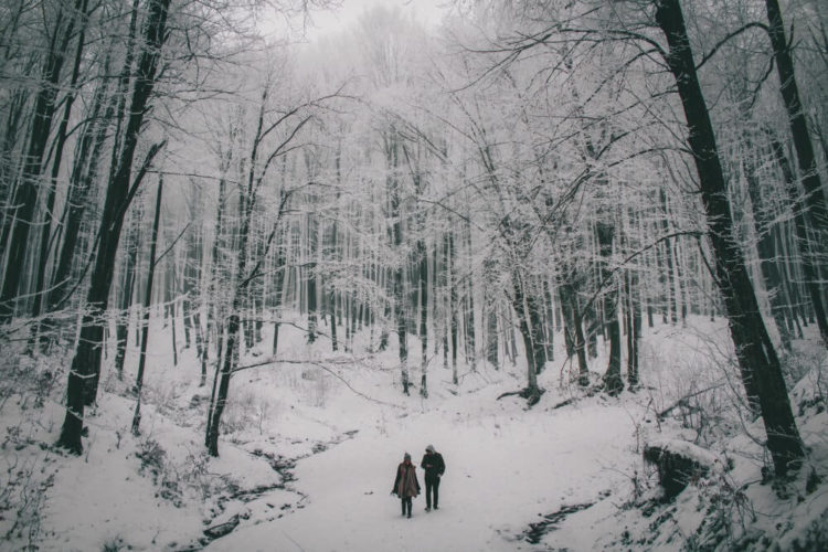 Couple walking through a snowy forest