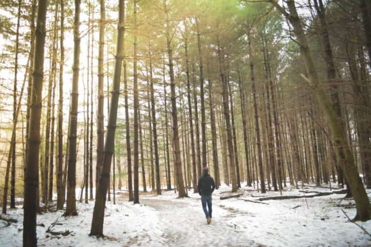 Man on a winter walk through the forest