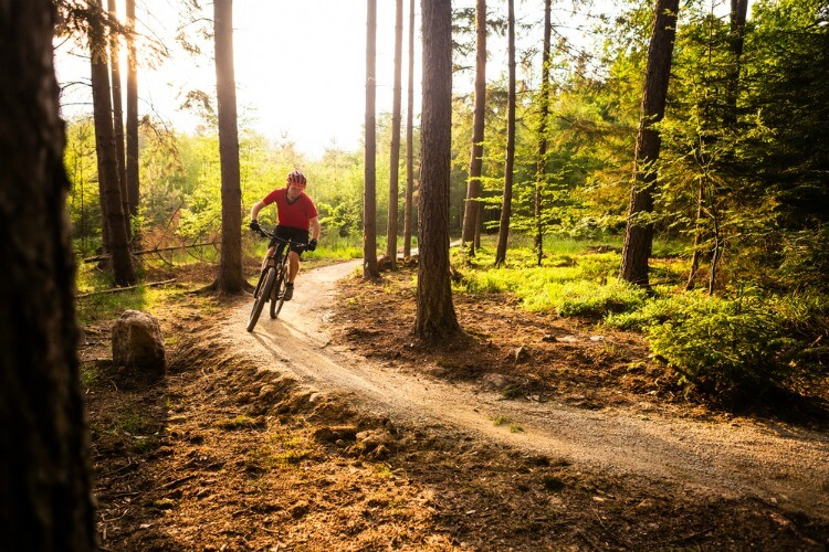 Man mountain biking through a forest